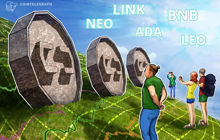 Top-5 Cryptos This Week: NEO, LINK, ADA, BNB, LEO