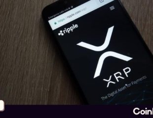 XRP Bleeding Amidst Ripple's P2P XRP Payment Platform Goes Live in Beta